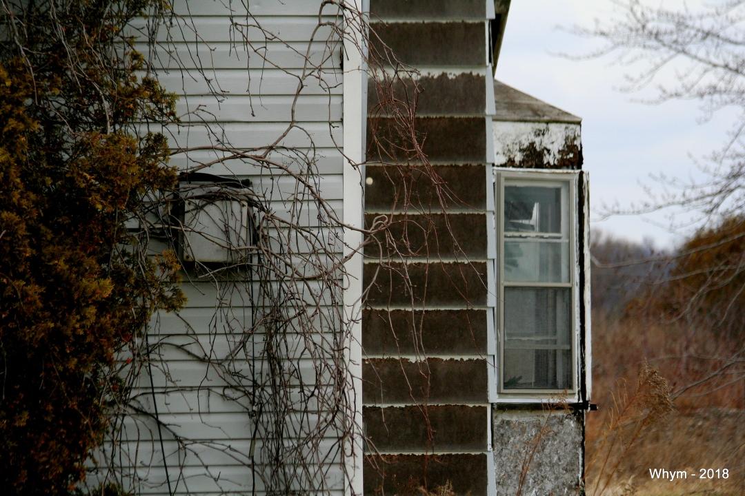 Abandoned House_5