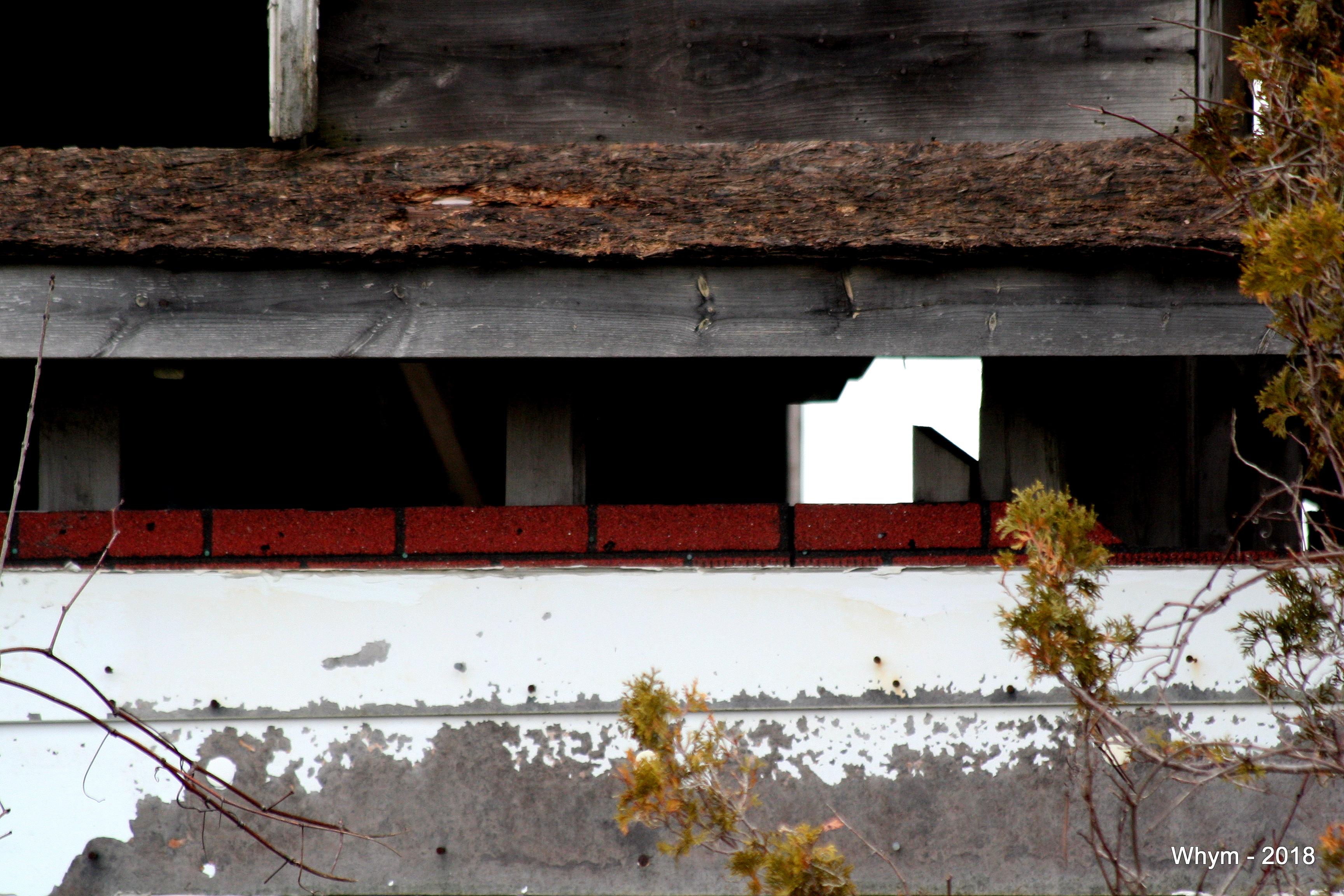 Abandoned house_4.jpg
