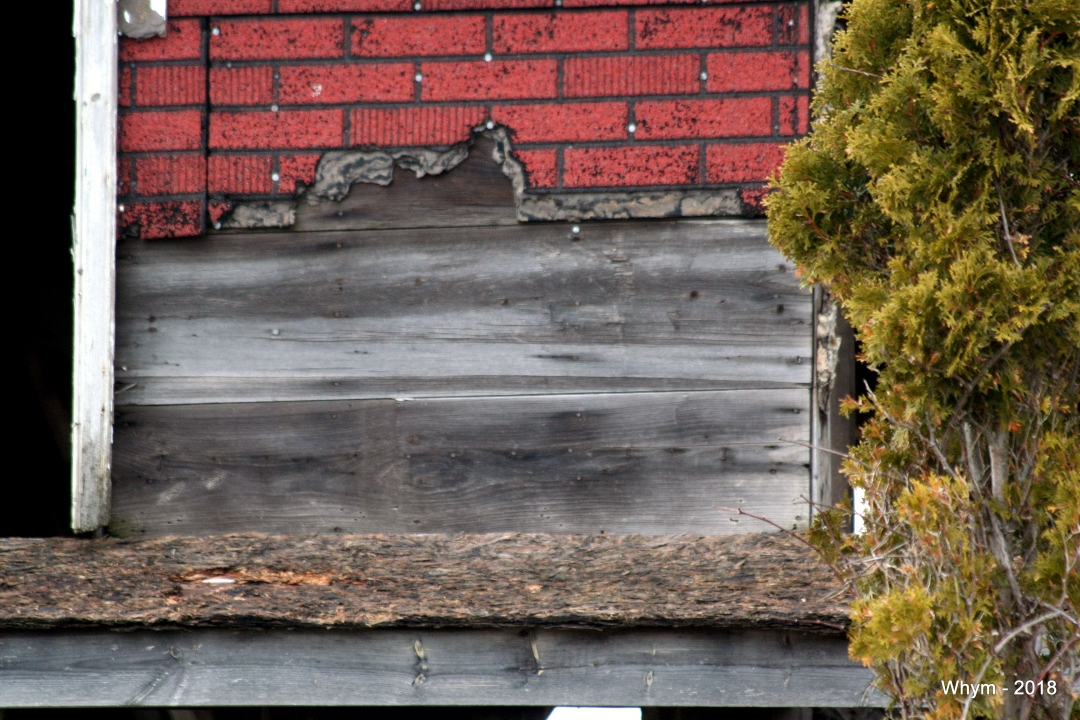 Abandoned house_2.jpg